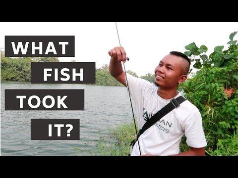 Singapore Fishing | NEW SERANGOON LEGAL FISHING GROUND