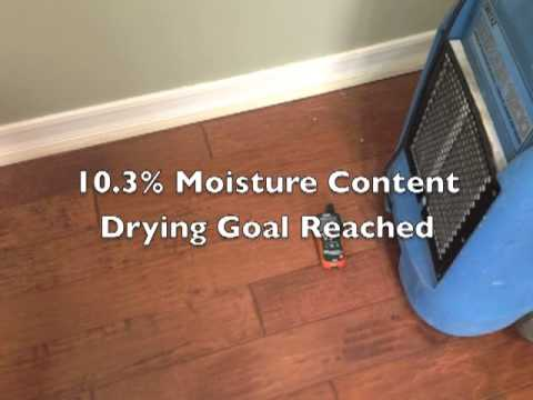 Drying Wet Wood Floors North County Water Damage San Diego Mr