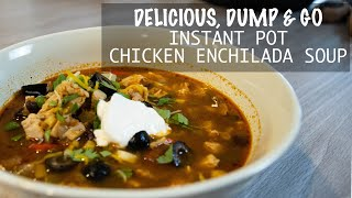 DELICIOUS, DUMP & GO Instant Pot Chicken Enchilada Soup Recipe