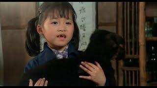 【宇哥】这部32年前的台湾电影轰动一时,主题曲每个华人都会唱《搭错车》