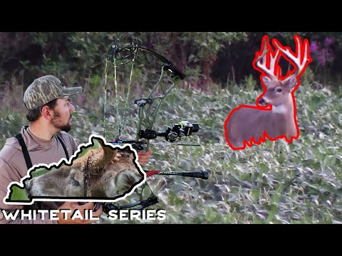 Shooter Buck First Time Hunt | Opening Day | Kentucky Whitetail Series