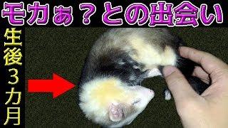 Twitteフォローはコチラ→https://mobile.twitter.com/urara_123urara い...