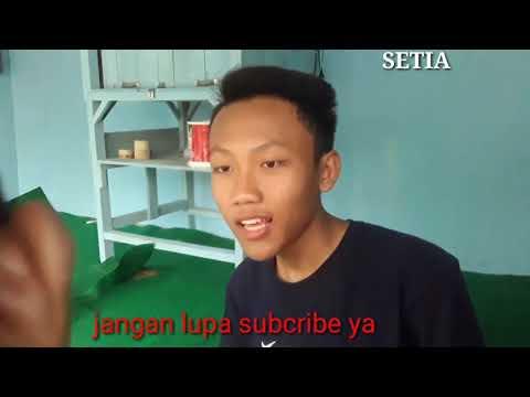 DODO HAMPIR BUNUH DIRI GARA GARA CINTA | News.  SETIA TV #TEMPENE #PEKALONGAN