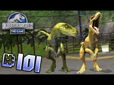 Raptor Pack Brawlasaur GOLD RAPTOR!! || Jurassic World - The Game - Ep 101 HD