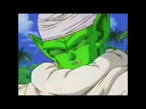 piccolo says yes
