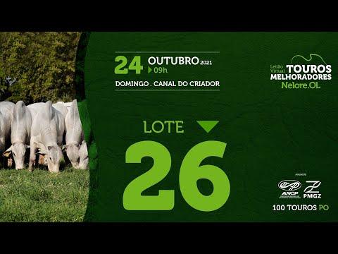 LOTE 26 - LEILÃO VIRTUAL DE TOUROS MELHORADORES  - NELORE OL - PO 2021