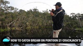 How To Catch Bream On Hardbody Lures: Pontoon 21 Crackjack | We Flick Fishing Videos