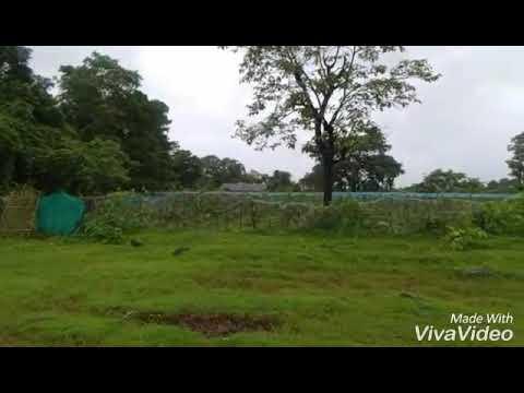 Maze Konkan Ch Gav