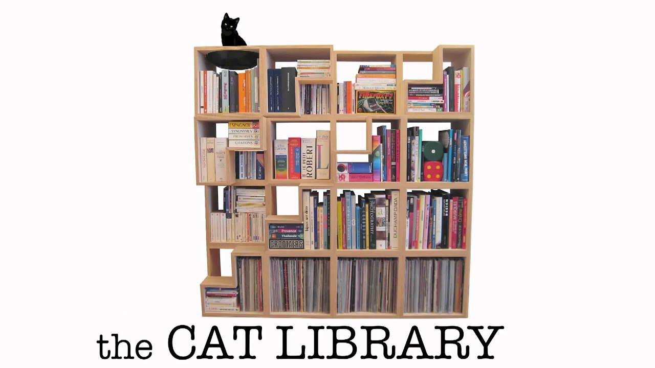 Make A Cat Friendly Bookcase