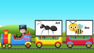 A to Z Animals Train