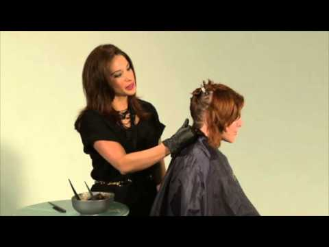 Product Education Clairol Pro Second Nature Hair Color Correction