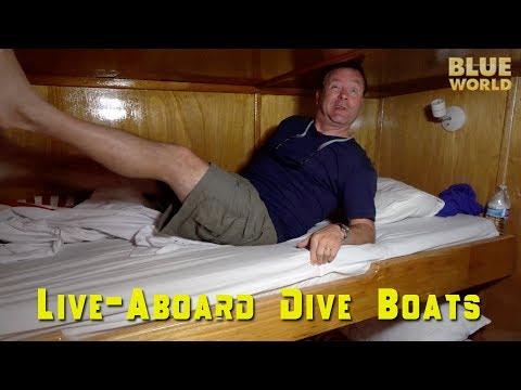 Live-Aboard Dive Boat Tour | BLUE WORLD VLOG