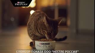 Реклама Purina Pro Plan в ТС Любимцы #3