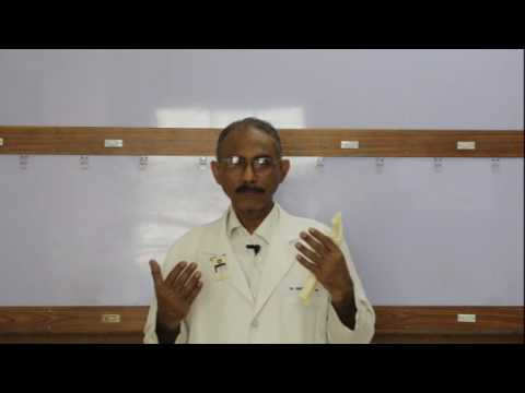 LECTURE 1 - What is Clubfoot