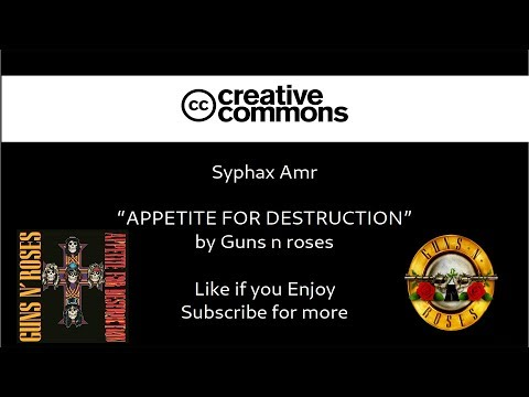 APPETITE FOR DESTRUCTION – Guns n roses /Cover