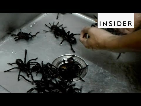 DJ Sama - Bugs Cafe Serves Whole Fried Tarantulas