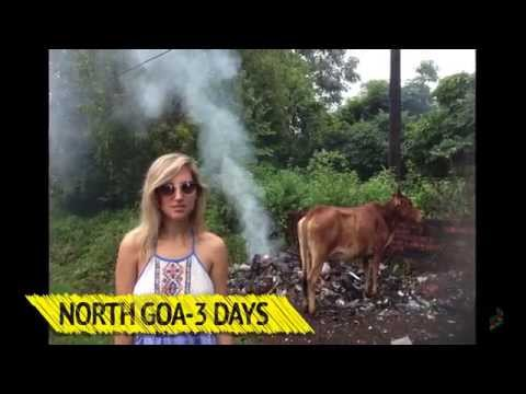 How to travel India in 14 days