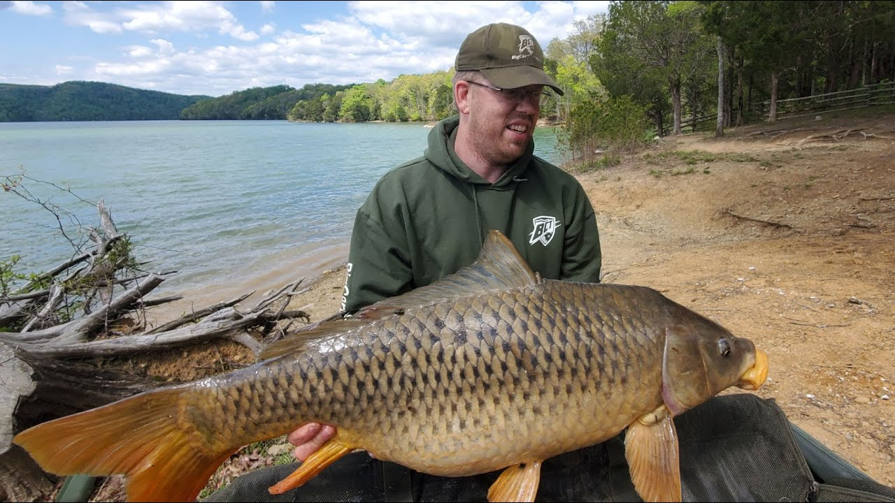 Carp Fishing USA - Carp Fishing in the US vs Europe - Fishing VLOG and channel updates.