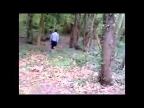 video choquante [violeur dans les bois ]