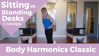 Sitting vs. Standing Desks: 5 Exercises to Keep your Body Happy at Either
