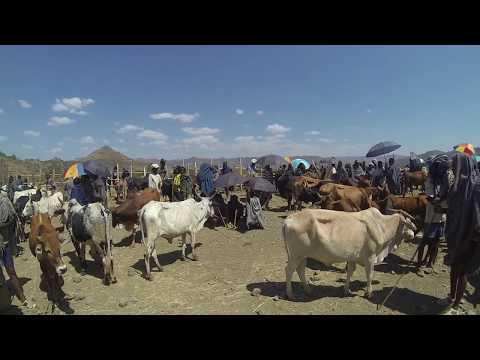 Touring Ethiopia (Addis Ababa - Simien Mountains) Full HD 1080p