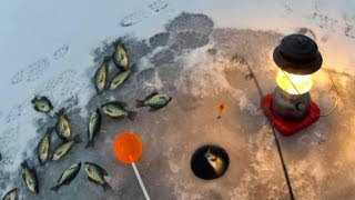 Ice Fishing Feeding Frenzy!