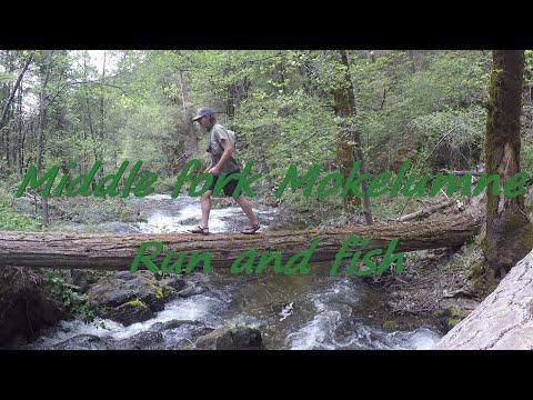 Middle Fork Mokelumne Run And Fish