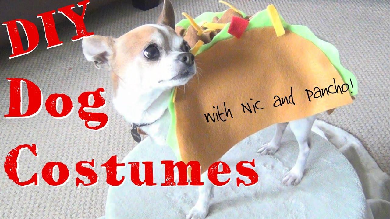 diy halloween dog costumes! ♥ nic and pancho collaboration - youtube