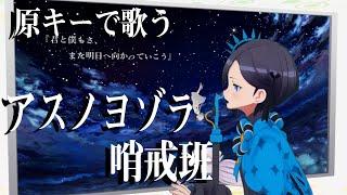 アスノヨゾラ哨戒班 covered by アメノセイ【毎日歌動画9日目】1Chorus