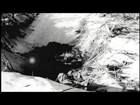 Burned supplies, debris and abandoned artillery shell on Enewetak, Marshall Islan...HD Stock Footage