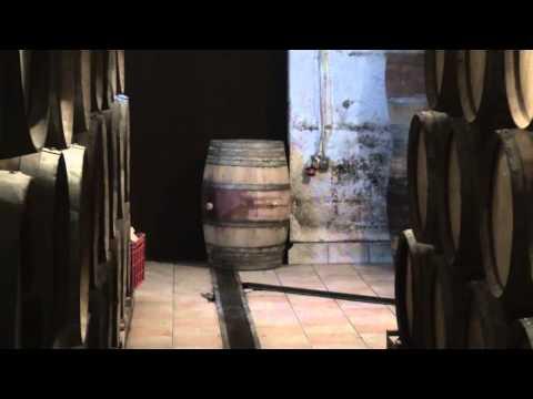 Some Great Croatian Wine