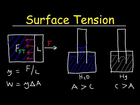 Surface Tension Of Water, Capillary Action, Cohesive And Adhesive Forces - Work \u0026 Potential Energy