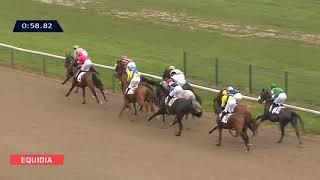 Vidéo de la course PMU PRIX DU BU