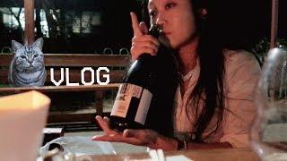 [먹방 브이로그] 뿌링클+와인의 조합???????? 노상까기 좋은 가을의 끝자락 (ft. 내인생을 망치러온 나의 구원자, 1영상 3뿌링)