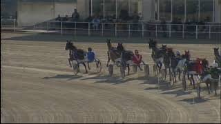 Vidéo de la course PMU PREMI ELEAZAR