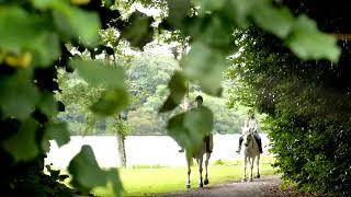Rediscover Ashford Castle