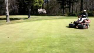 Verticutting 3 Green