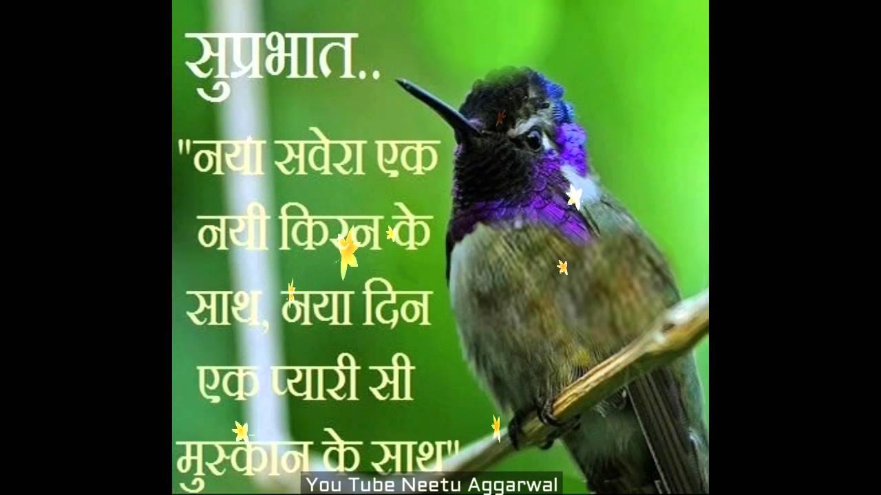 Good morning wishes in hindigood morning greetingsmessages good morning wishes in hindigood morning greetingsmessagesimagessmsgood morning whatsapp video kristyandbryce Gallery