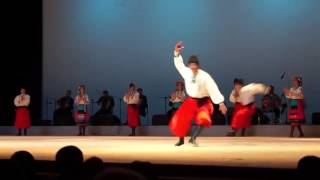 Incredible Ukrainian dance Gopak with elements of Ukrainian folk music  Ballet Sukhishvili in Kiev