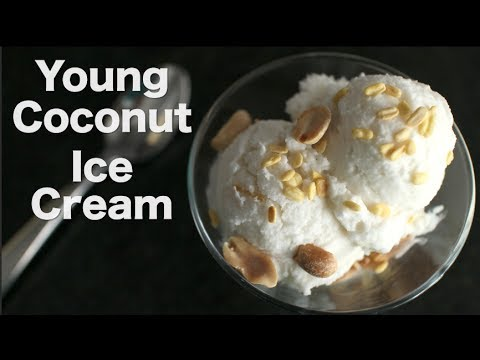 Young Coconut Ice Cream Recipe ไอติมกะทิ – Hot Thai Kitchen
