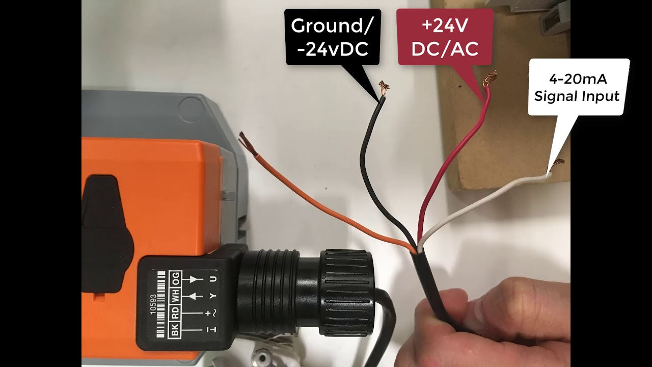 small resolution of belimo valve wiring