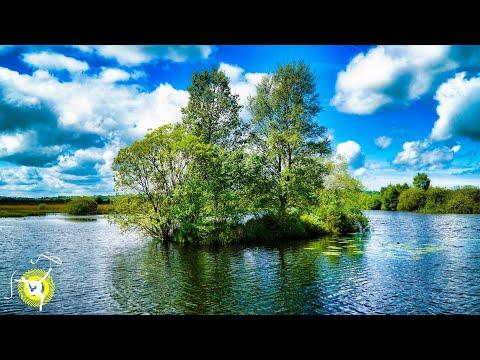 Lake Nature Sounds - Water Waves & Birds Singing - Relaxing, Sleep Or Meditation - 4K