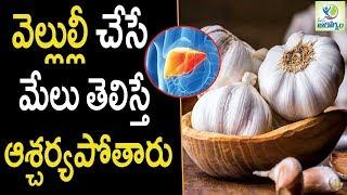 Amazing Health Benefits of Garlic  - Health Tips in Telugu || Mana arogyam