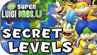 New Super Luigi U: Secret Levels (4 players)