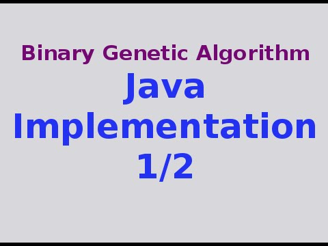 Genetic Algorithms 8/30: Binary Genetic Algorithm .. Java Code 1/2