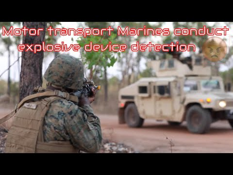 Motor transport Marines conduct field convoy training for explosive device detection,tactical combat