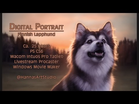 Digital Portrait: Finnish Lapphund - Evita