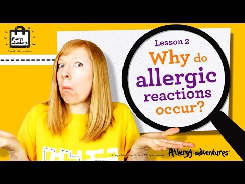 Lesson 2: Why Do Allergic Reactions Occur? Allergy Adventures Workshop For Schools