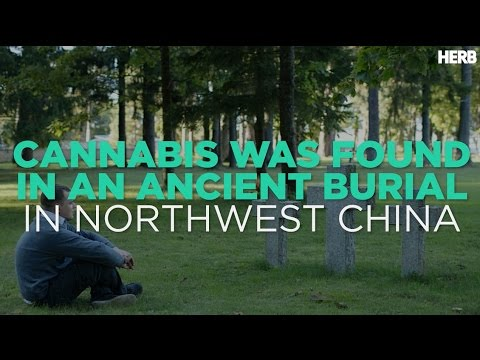 Marijuana Found In An Ancient Burial In Northwest China