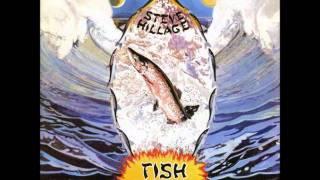 Steve Hillage - Aftaglid
